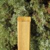 Zaunlatte Förde 24x54 mm Kopf geschrägt