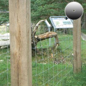 Kantholz aus Eiche sägerau